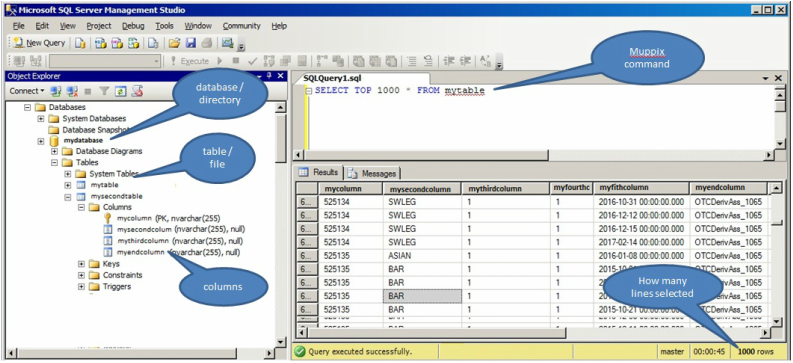Sql excel commands muppix purveyors of fine data analysis httpcodeprojectarticles33052visual representation of sql joins ccuart Choice Image